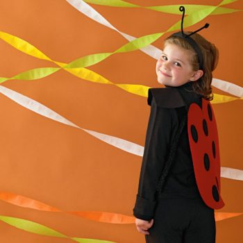 Easy Ladybug Halloween Costume