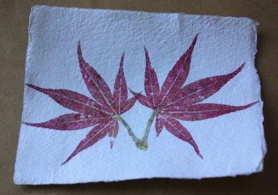 Hammered Flower Leaf Prints