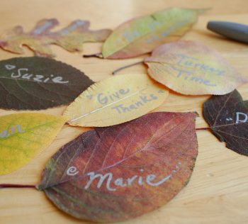 Thanksgiving Leaves Placecards