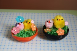 Spring Chicks House