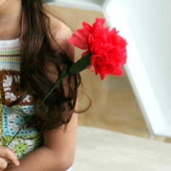Tissue Carnation