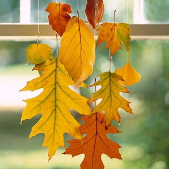 Waxed Hanging Leaves