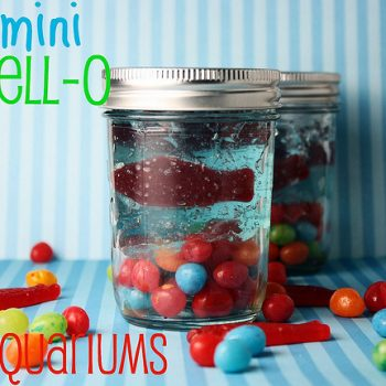 Mini Jello Aquariums