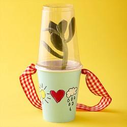 Paper Cup Terrarium