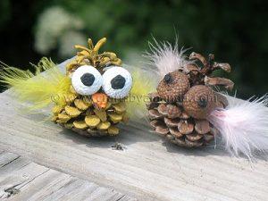 pinecone-owl3