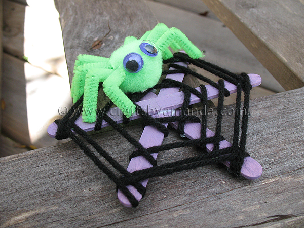 Craft Stick Spider Web