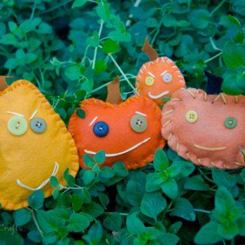 Pumpkin Softies