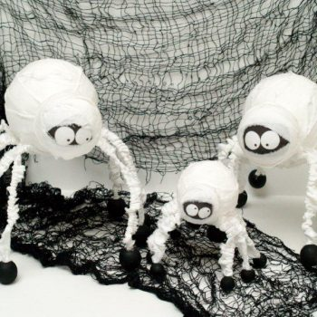Spider Mummies