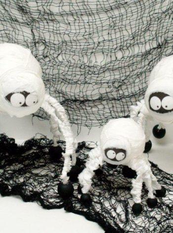 Spider Mummies