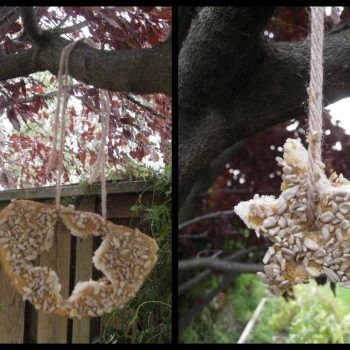 Edible Ornaments for Wildlife