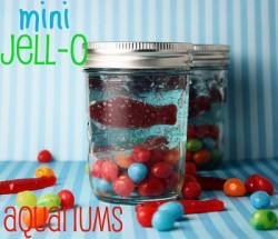 mini-jello-aquariums-400x344