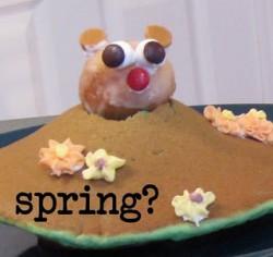 Groundhog Pancakes
