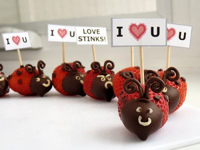 Strawberry Love Bugs