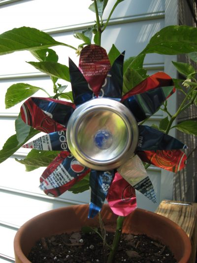 Soda Can Flower