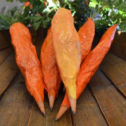 Paper Mache Carrot Pencils