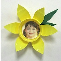 Daffodil Photo Magnets
