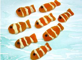 Apricot Clownfish