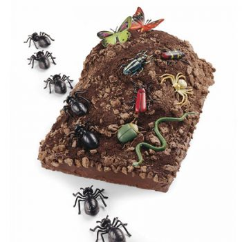 Bug Mountain Cake