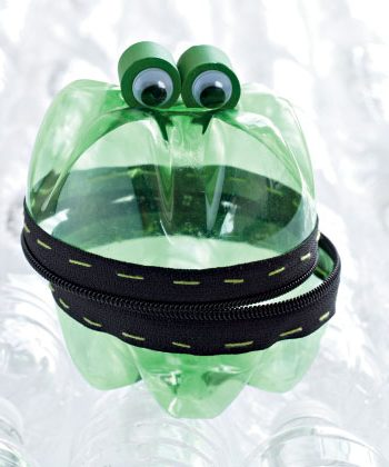 Treasure Keeper Frog