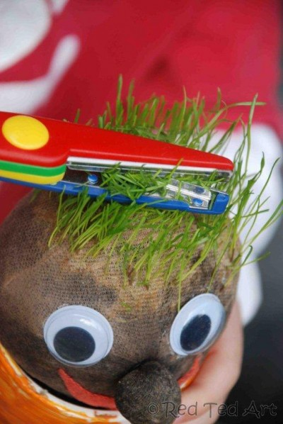 Grass Heads Fun Family Crafts