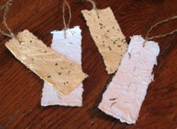 Seeded Paper Bookmarks