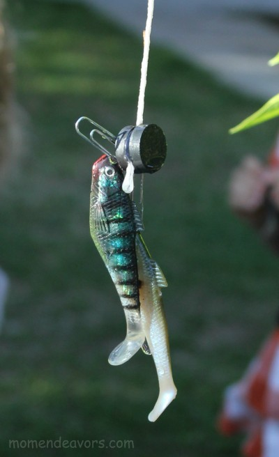 Backyard Fishing