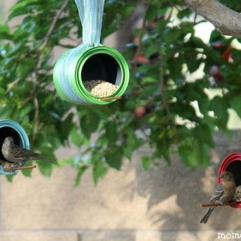Paint Can Bird Feeders