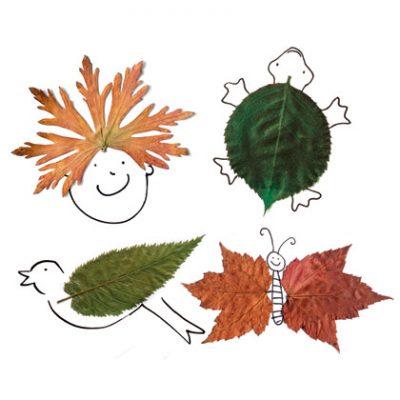 Foliage Friends