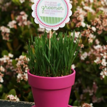 The Grass is Always Greener – Teacher Gift