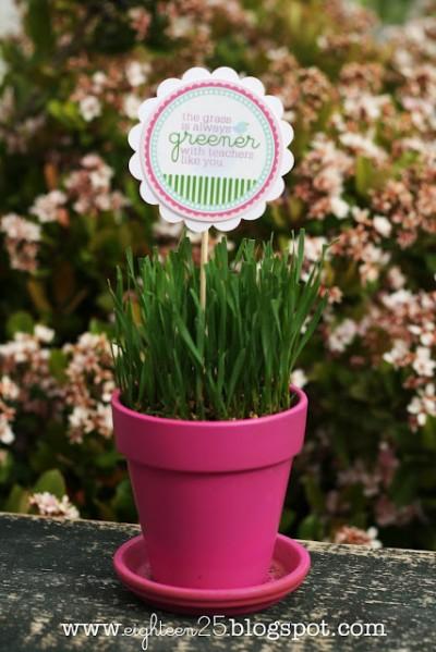 The Grass is Always Greener – Teacher Gift