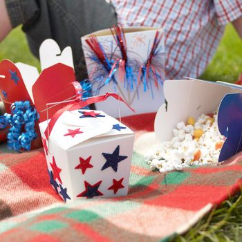 Patriotic Snack Containers