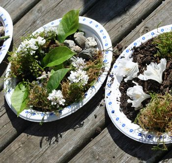 Paper Plate Gardens