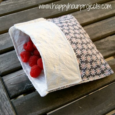 Lined Snack Bag