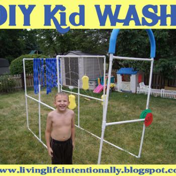 Back Yard Kid Wash