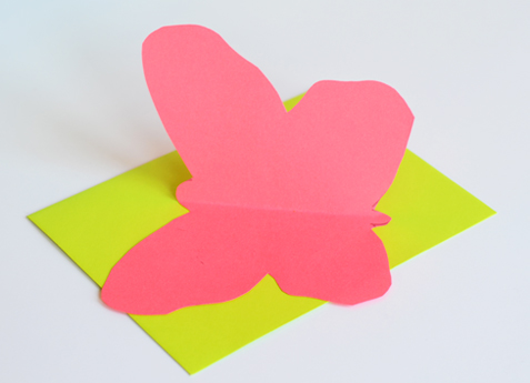 Paper Butterfly & Fish Cards