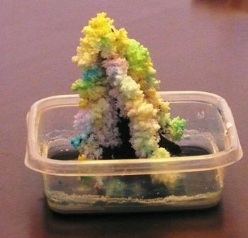 Salt Crystal Magic Tree