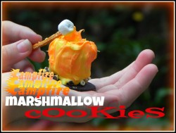 Campfire Marshmallow Cookies