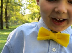 Little Felt Bow Tie