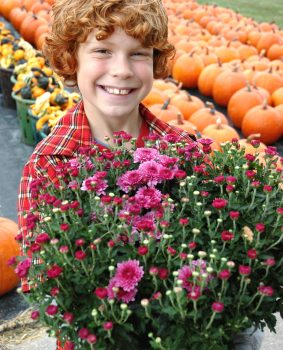 Fall Flower Planting for Kids