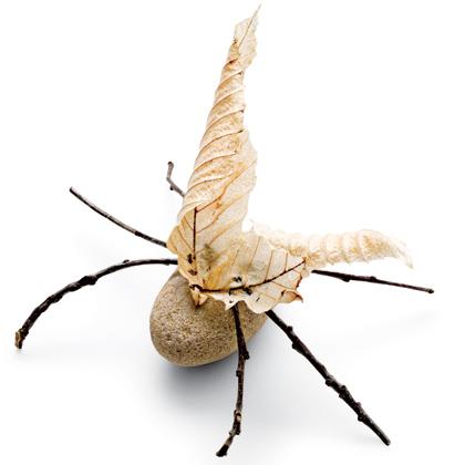 Make Rock Bugs