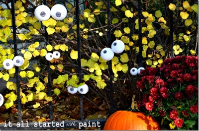 Outdoor Spooky Eyes