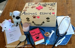 Homemade Veterinarian Kit