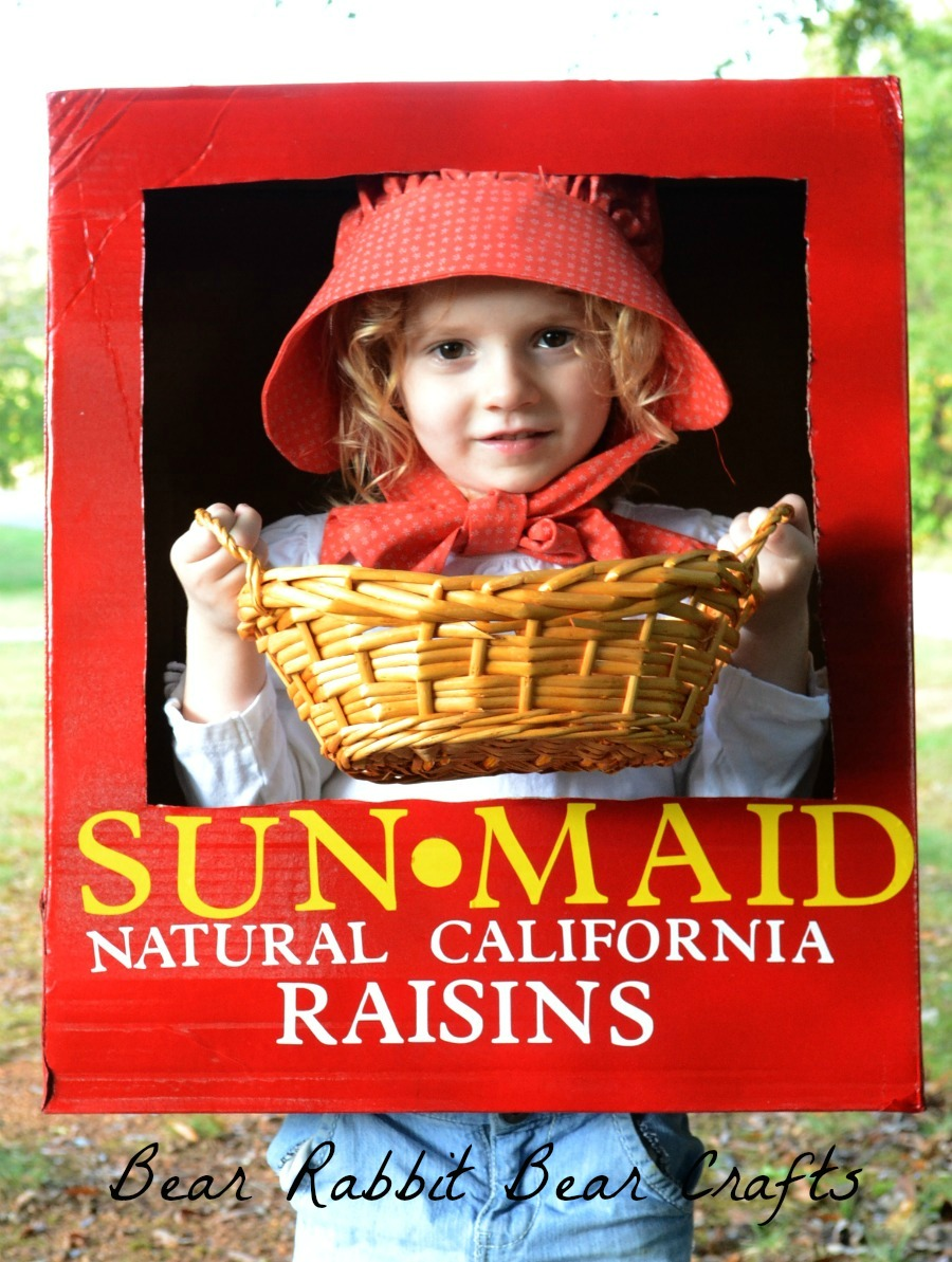 Sunmaid Raisin Costume Fun Family Crafts