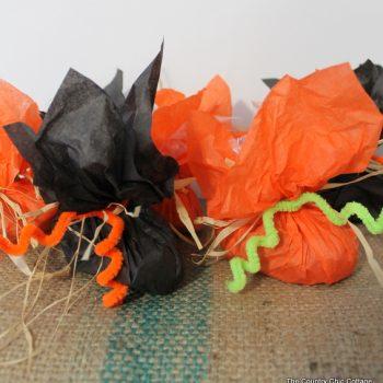 Pumpkin Favor Bags