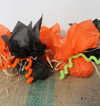 Pumpkin Favor Bags