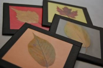 Fall Leaf Coasters