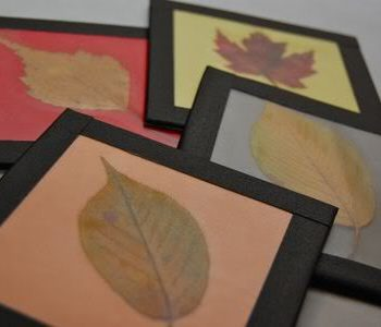 Fall Leaf Coasters