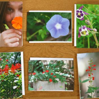 Make Your Own Seeds Packets