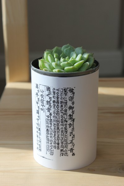 Tin can succulent planters fun family crafts for Large tin can crafts