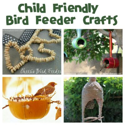 Make a homemade bird feeder! February is National Bird Feeding Month